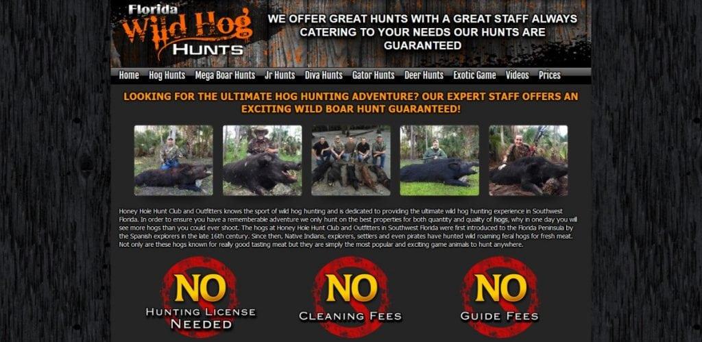 Wild-Hog